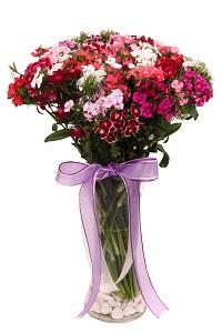 Renkli Çiçekler+Ücretsiz teslimat
